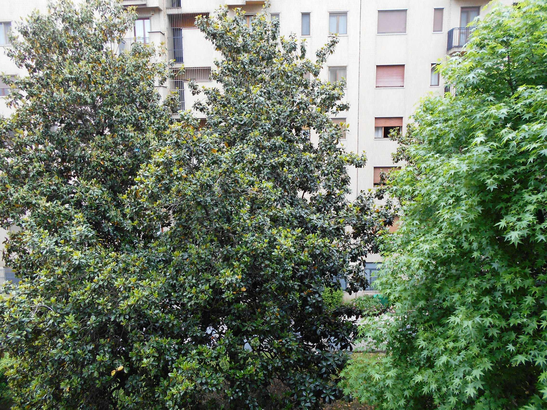 Appartamento Q.re Fatima